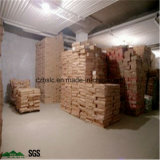 La conservación en cámara frigorífica de las ventas de la fábrica, cámara fría, congeladora para el té