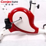 Indoor Cycling Exercise Body Fit Magnetic Spinning X Bike