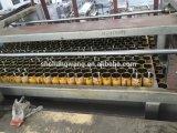주스 병 충전물 기계 레몬 주스 패킹 생산 라인