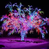 Decoração ao ar livre da luz da árvore do diodo emissor de luz para a iluminação de Natal