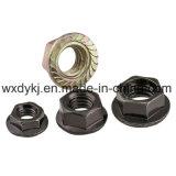 Noix galvanisée noire de bride d'hexagone DIN 6923