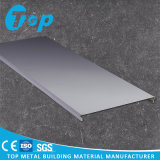 SpitzenPerfoarted C-Geformte Streifen-Decken-Aluminiumdecken-lineare Decke