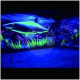El polvo luminoso Glow Light de fósforo en el pigmento oscuro, pintura de pared