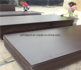 M. Glue Film Faced Plywood de faisceau de peuplier pour l'usage de construction