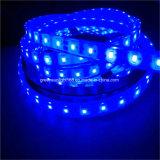 2835 SMD impermeable TIRA DE LEDS