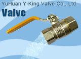 La compresión de codo de tubo de latón Español Adaptador (YD-6044)