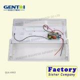 Indicatore luminoso Emergency ricaricabile del tubo fluorescente di T5 2*8W