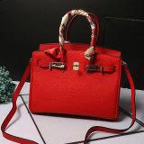 Neuester Form-Dame-Entwerfer-Handtaschen-Kontrast-Farben-Frauentote-Beutel Emg4756