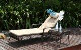 PEの藤の水泳のラウンジ浜のラウンジの藤の家具