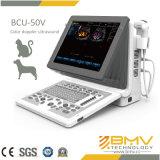 Bcu-50携帯用超音波の医学システム