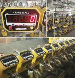 Escala de guindaste elétrico 0,5t-50tons com controle remoto