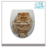 Reizender Katze-Weiche-Abschluss-keramischer Arbeitskarte-Toiletten-Sitz