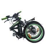 リチウム電池および250With350/500Wモーターを搭載する電気バイク
