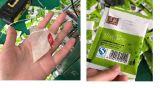 Macchina imballatrice di riempimento non tessuta di sigillamento della bustina di tè della piramide
