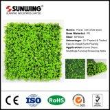 صنع وفقا لطلب الزّبون [ب] كروب مادّيّة بلاستيكيّة اصطناعيّة خضراء