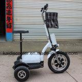 самоката колеса e мотоцикла 3 мотора эпицентра деятельности 350W имбирь Roadpet электрического Zappy