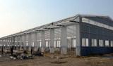 Edificios del almacén de acero ligero moderno/de la estructura de acero