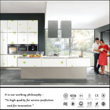 Cozinha elevada Caibnet de Zh Gloosy (FY6620)