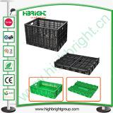 Plastikspeichergemüse und Tomate-Rahmen für Bauernhof
