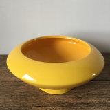 Pequeña olla de cerámica blanca con el platillo suculento de