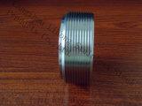 Schraubnippel des Edelstahl-DIN2999 vom Rohr