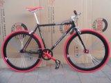 Bicicleta de montanha Sr-MTB310