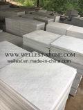 タイルを舗装する純粋で白い珪岩の床等級の屋外の床タイルの壁のクラッディングのタイル