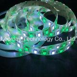 LED 명부 24VDC 5050SMD LED 장비 지구 점화 RGBW 마술 꿈