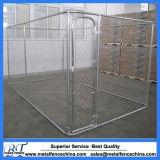 Commerce de gros grande piscine sur le fil chien Cages de maillon de chaîne