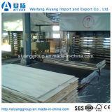 Contreplaqué filmé Shandong Fabricant / Construction