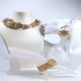 Collier réglé de bracelet de boucle d'oreille de poste de pierres de fleur de bijou acrylique neuf de mode