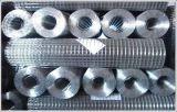 La rete metallica saldata ricoperta PVC galvanizzata alta qualità