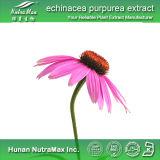 Echinacée Purpurea Extract (polyohenol de qualité de 5%)