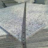 中国の安く白い花こう岩G603の丸みがある端のステップ