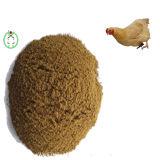 Цыплятина мяса и костяной крупы и питание здоровья поголовь
