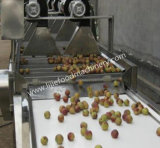 Machine à laver automatique de fruits et légumes