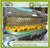 Frucht im Sirup-Produktionszweig beenden