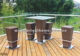 Barre réglée/Tableau de barre/chaise de barre (BP-909)