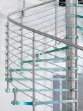 Escadaria espiral de aço de Moden com passo de vidro