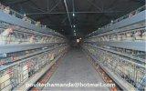 Автоматическое оборудование клетки птицефермы цыпленка для Breeding (рамка)