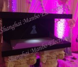 270 gradi di 3D Holographic Display Show Case/Hologram Showcase/Holography Projector