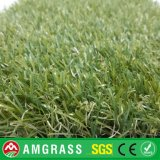 Трава глиста и искусственная трава для сада