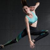 As mulheres de alta qualidade Perneiras Sutiã Desgaste Ginásio Fitness