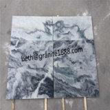 La parete di pietra naturale grigia nuvolosa decora le mattonelle di marmo