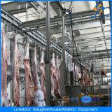 De Apparatuur van de Slachting van het Vee van Halal met 50 Hoofden/Dag