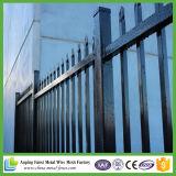 정원을%s 2.1*2.4m 분말 입히는 강철 장식적인 철 강철 관 담