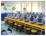 Het Bureau van de Computer van de Student van de school voor het Meubilair van het Klaslokaal (sf-29)