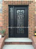 جيّدة نوعية حديد جميلة باب وحيد لأنّ منزل