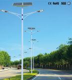 De programmeerbare Lichte ZonneStraatlantaarn van de Wijze met Dubbele Wapens