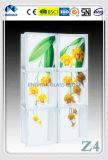 Het Schilderen van de Kwaliteit van Jinghua het Beste Artistieke z-1 Blok/de Baksteen van het Glas